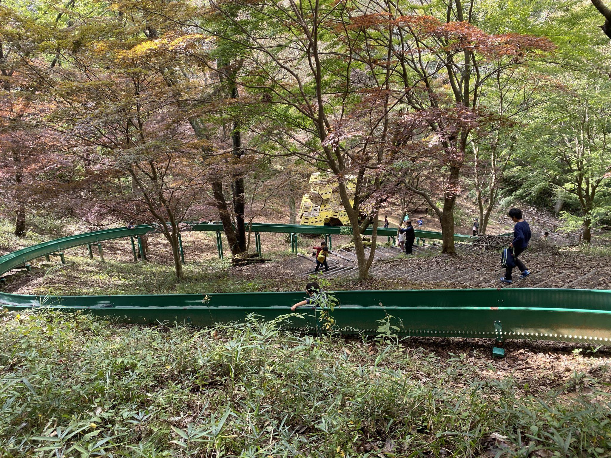 森林公園:長い滑り台